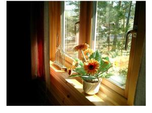 Окна ПВХ экологически безопасны