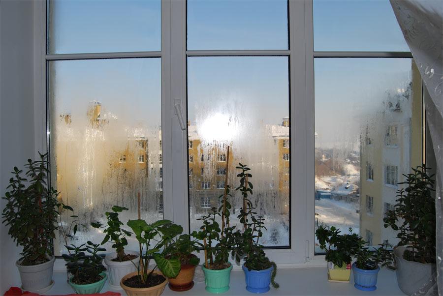 Почему запотевает пластиковое окно изнутри